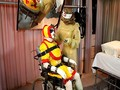 Dude gets tied up while wearing a silly costume