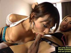 Ladyboy amateurs sucking on cock for each other