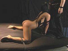 Ass slapping and blowjob in bdsm bondage